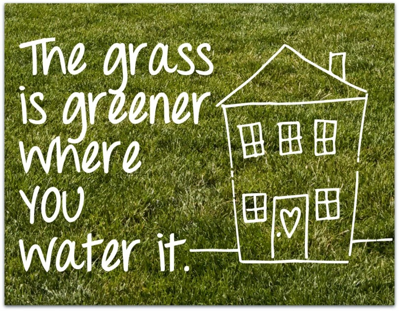 Image result for the grass is greener where you water it